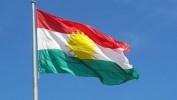 PAKê Li 7 Bajaran Roja Ala Kurdistanê Pîroz Kir/PAK 7 Şehirde Kürdistan bayrağı Gününü Kutladı