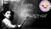 21ê Sibatê ji bo Kurdên ku bi Kurdî nizanin bila bibe destpêka fêrbûna zimanê Kurdî